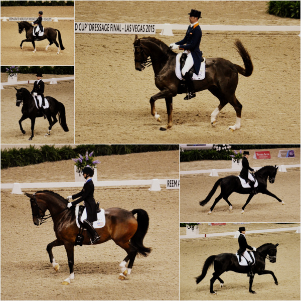 Dressage World Cup 2015 Riders